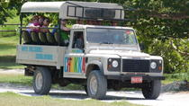 Jeep Safari Adventure Tour from Montego Bay, Montego Bay, Ziplines