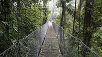 Hanging Bridges Walking Tour in Arenal, Arenal Volcano National Park, Nature & Wildlife