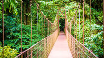 Hanging Bridges Walking Tour in Arenal, La Fortuna