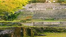 Belize New River Cruise and Lamanai Mayan Ruins Day Trip by Air from Ambergris Caye, Ambergris...