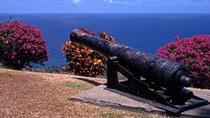 Tobago Island Sightseeing and Plantation Tour, Trinidad and Tobago, Full-day Tours