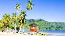 Trinidad Highlights and Scenic Drive Tour, Trinidad and Tobago, Half-day Tours