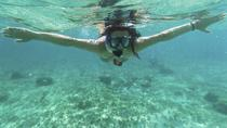 Acapulco Snorkeling Tour, Acapulco, Full-day Tours