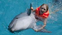 Dolphin Swim and Ride Program in Cancun, Cancun