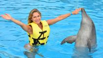 Riviera Maya Triple Adventure Dolphin Program , Playa del Carmen, Swim with Dolphins