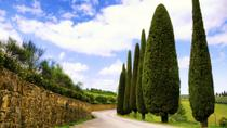Taste of Chianti: Tuscan Cheese, Wine and Lunch from Florence, Florence, 4WD, ATV & Off-Road Tours
