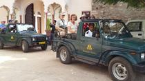 Small-Group Rajasthan Tour from Jaipur Including Traditional Lunch, Jaipur, Day Trips