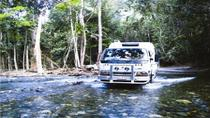 Cooktown 4WD Adventure Tour from Cairns or Port Douglas, Cairns & the Tropical North, 4WD, ATV ...