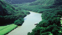 Kauai Shore Excursion: Waimea Canyon and River, Kauai, Ports of Call Tours