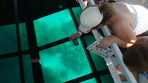 Glass-Bottom Boat Cruise from Waikoloa, Big Island of Hawaii, Snorkeling