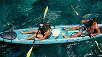 Snorkel, Kayak and Dolphin Experience in the Big Island's Kealakekua Bay, Big Island of Hawaii, null