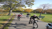 Guided Bike Tour of Boston, Boston