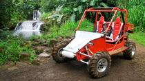 Off-Road Tour of Kauai Waterfalls, Kauai, White Water Rafting & Float Trips
