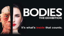 Bodies The Exhibition at the Luxor Hotel and Casino, Las Vegas, Adults-only Shows