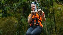 Adrena-Line Zipline Canopy Tour at Rainforest Adventures, St Lucia, Hiking & Camping
