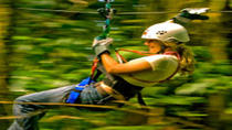 St Lucia Aerial Tram and Zipline Canopy Tour, St Lucia, Adrenaline & Extreme