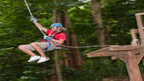 St Lucia Shore Excursion: Rainforest Aerial Tram and Zipline Canopy Tour, St Lucia, null