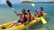 St Thomas Self-Guided Kayak Tour in Mangrove Lagoon with GPS Geocaching, St Thomas