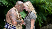 Auckland Shore Excursion: Maori Tour and Cultural Performance, Auckland, Ports of Call Tours