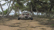 Punta Cana Full-Day Dune Buggy Adventure to Lemon Lagoon Bay, Punta Cana, 4WD, ATV & Off-Road Tours