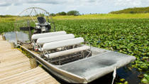 Miami Everglades Airboat Adventure mit Biscayne Bay Cruise, Miami