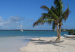 Transfert aller-retour Miami - Key West, Miami, Bus Services