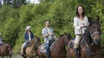 St Kitts Rainforest Horseback Riding Tour , St Kitts, Nature & Wildlife