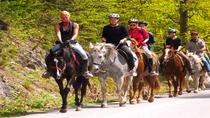 Scenic Horseback-Riding Tour from San Juan, San Juan