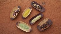 Bush Tucker (Traditional Indigenous Food) and Reptiles Tour from Ayers Rock, Ayers Rock