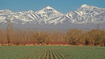 Mendoza City Tour, Mendoza, null