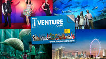 Singapore Flexi Attractions Pass with Optional Universal Studios Singapore Admission, Singapore