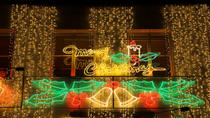 Private Tour: Traditional Black Cab Tour of London's Christmas Lights, London