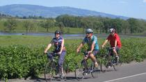 Wine Country Adventure: Bike and Kayak Wine Tour, Napa & Sonoma, Wine Tasting & Winery Tours