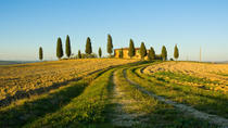 Livorno Shore Excursion: Chianti and Tuscany Countryside Private Wine Tour, Florence, Ports of Call ...