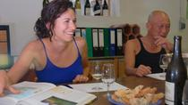 Organic Wine Tasting in Nice, Nice, Bike & Mountain Bike Tours