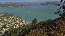 Explore Marin County: Sausalito, Muir Woods and Seaplane Tour, San Francisco