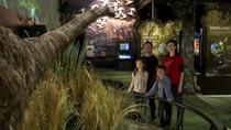 ZEALANDIA: The Exhibition and Sanctuary Valley, Wellington, Attraction Tickets