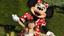 Billet Disneyland Paris : 1 jour 2 parcs, Paris, Disney® Parks