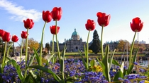 2-Day Victoria Tour from Vancouver including Butchart Gardens, Vancouver, Multi-day Tours