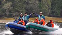 Small-Group Zodiac Wilderness Adventure from Ketchikan , Ketchikan, Jet Boats & Speed Boats