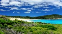 Melbourne Super-Sparangebot: Great Ocean Road plus Wilsons Promontory und Melbourne Attraction ...