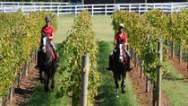 Mornington Peninsula Horseback Winery Day Trip from Melbourne, Melbourne, Dolphin & Whale Watching