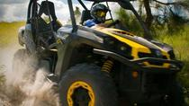 Dune Buggy Off-Road Experience, Orlando, 4WD, ATV & Off-Road Tours