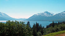 Skagway Shore Excursion: Half-Day Tour to the Yukon Border, Skagway