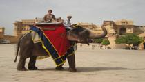 Private Tour: Amber Fort and Jal Mahal Including Elephant Ride, Jaipur, null