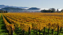 San Francisco Shore Excursion: Private Tour to Wine Country by Luxury Transport, San Francisco