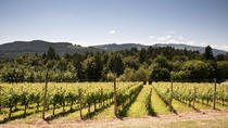 Vancouver Shore Excursion: Private Fraser Valley Wine Tour, Vancouver, Full-day Tours