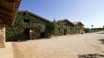 Katakolon Shore Excursion: Private Wine-Tasting Tour of Mercouri Estate Winery, Cyclades Islands, ...