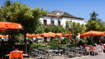Malaga Shore Excursion: Malaga- Marbella and Puerto Banus Private Tour