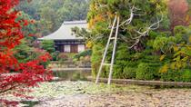 Scholar-led Kyoto Walking Tour: Japanese Gardens and Landscape, Kyoto